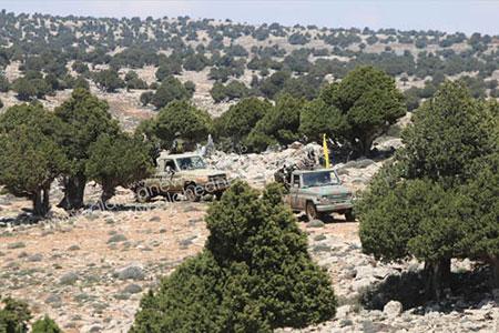 Les exploits du Hezbollah dans le Qalamoun effraient «Israël».