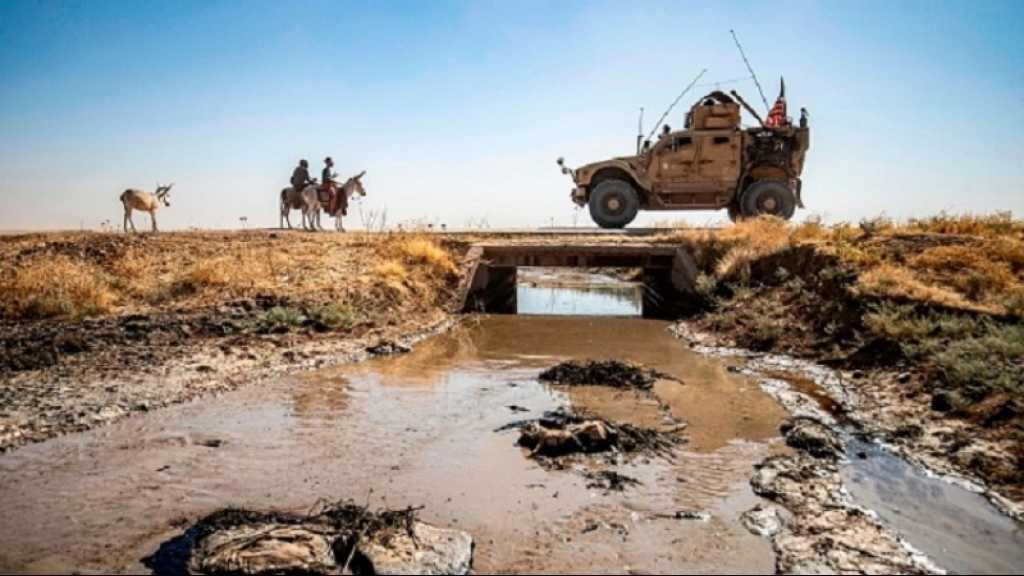 Syrie: au nord-est, cheptel et terrains agricoles souffrent des fuites de pétrole